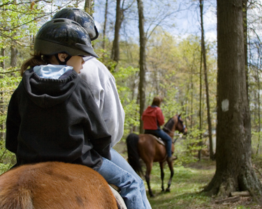 Tampa Horseback Rides Fun 4 Tampa Kids