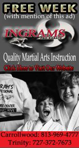 Ingrams Pro Karate