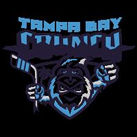 Tampa Bay Crunch