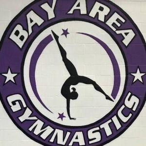 Bay Area Gymnastics Spring Break Camp