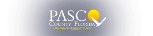 Pasco County Counselor In Training Program