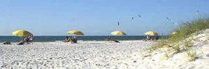 Sand Key Beach and Park