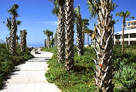 Indian Shores / Tiki Gardens Beach