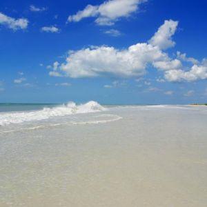 Clearwater - Honeymoon Island State Park