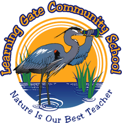Learning Gate Community School