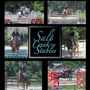 Salt Creek Stables