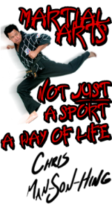 Man-Son-Hing Martial Arts