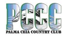 Palm Ceia Swim Team
