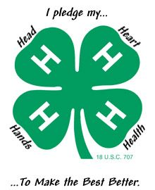 Hillsborough County 4-H