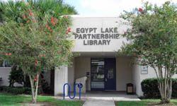 Egypt Lake Partnership Library
