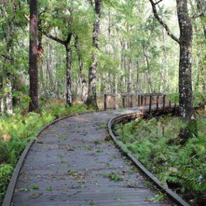 Hillsborough County Bike Trails