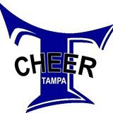 Cheer Tampa Birthday Parties