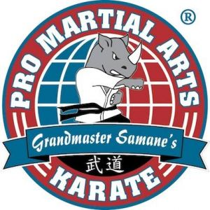 PRO Martial Arts Birthday Parties