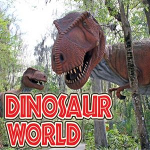 Dinosaur World Birthday Parties