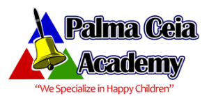 Palma Ceia Academy Summer Camp