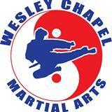 Wesley Chapel Martial Arts Academy Summer Camp