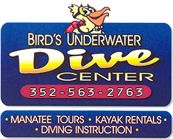 Bird's Underwater Dive Center