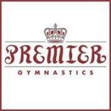 Premier Gymnastics Recreational Camp