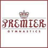 Premier Gymnastics Recreational Camp
