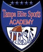 Tampa Elite Sports Academy Cheerleading