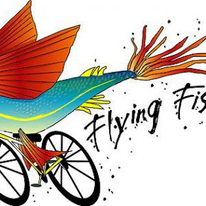 Flying Fish Bikes