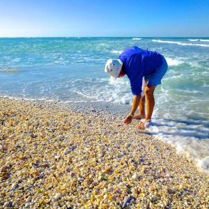 Sanibel Island & Captiva Island Beaches