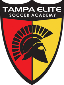 Tampa Elite Soccer Academy Youth Day Camp