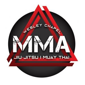 Wesley Chapel MMA - Jiu Jitsu- Muay Thai Summer Camp