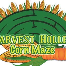 Harvest Holler Corn Maze