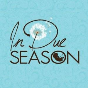 In Due Season Pregnancy Wellness & Birth Center