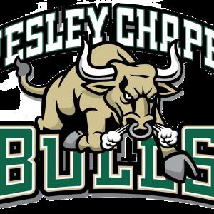 Wesley Chapel Bulls