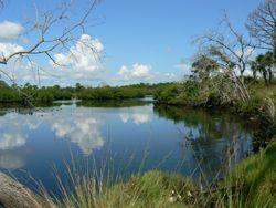 Double Branch Bay Preserve