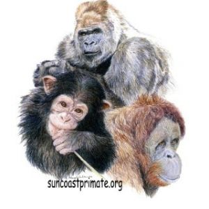 Suncoast Primate Sanctuary