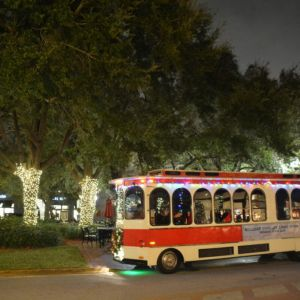 12/09 - 12/23 OMG Holiday Trolley Lights Tour