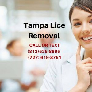 Tampa Lice Removal