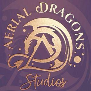 Youth Circus Camp at Aerial Dragons Studios
