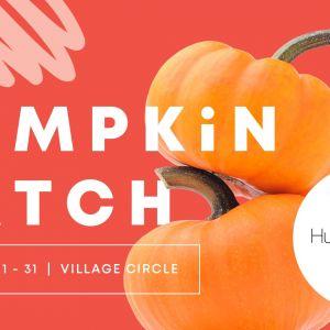 Hyde Park Village Pumpkin Patch