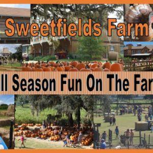 Sweetfields Farm Fall Corn Maze, Pumpkin Patch and Farm Activities