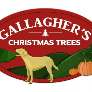 Gallagher's Pumpkins & Christmas Trees