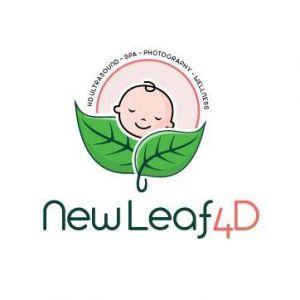 New Leaf 4D