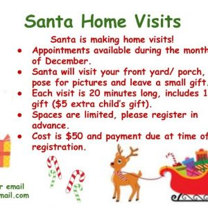 Santa Home Visits from Playtime Apollo Beach