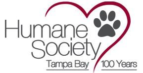 Humane Society of Tampa Bay No School Day Camps